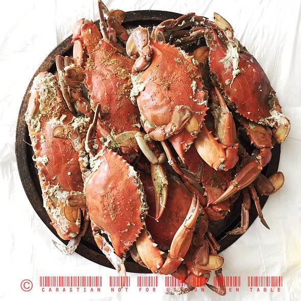 Maryland Blue Crabs @ Cambridge, Md
