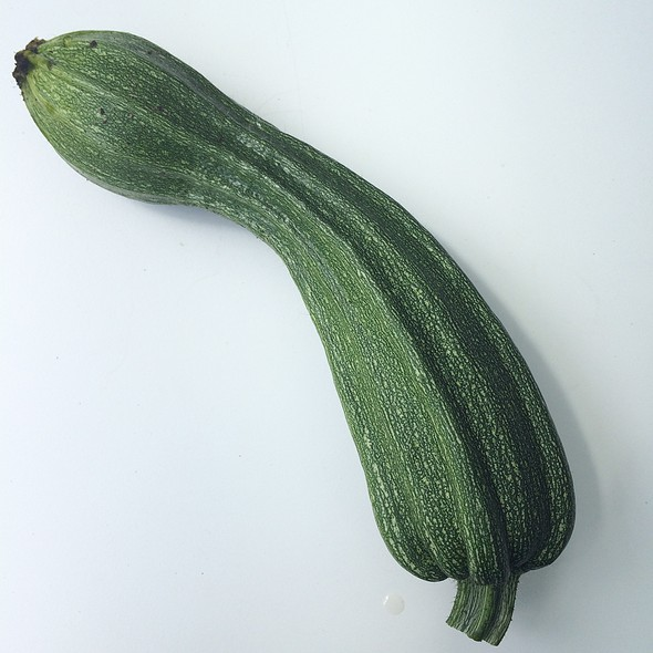 Zucchini from my Garden @ My Best Home Cooking