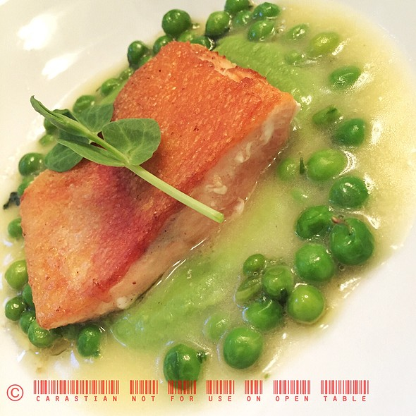 Trout, Pea Creme, Mint And Evoo Jus @ BNM Restaurant