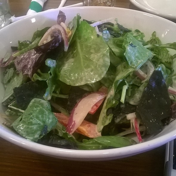 Salad @ Vegenation