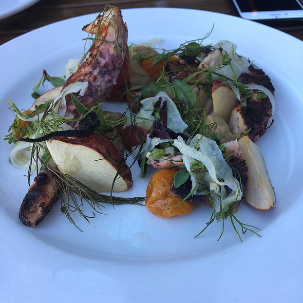Grilled Octopus - Bar Avignon, Portland, OR