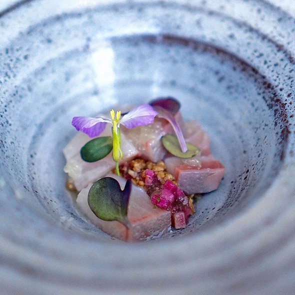 Kampachi, fish bone jelly, yuzu leaf, toasted buckwheat