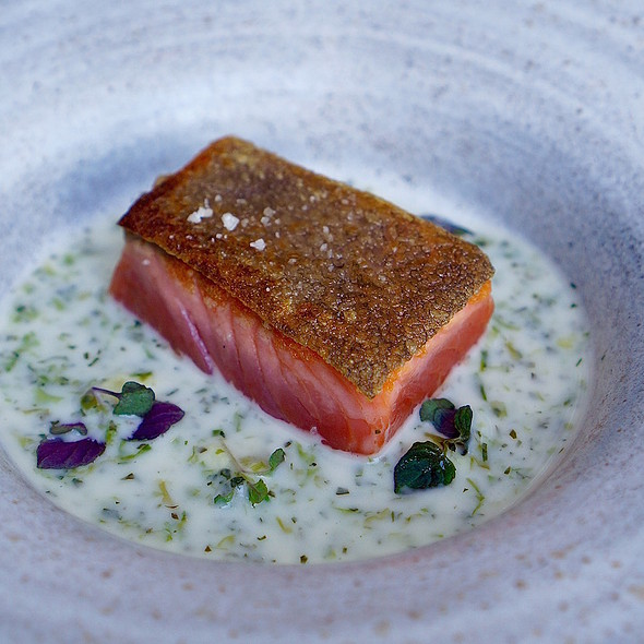 Ocean trout, whey shiso and ginger sauce