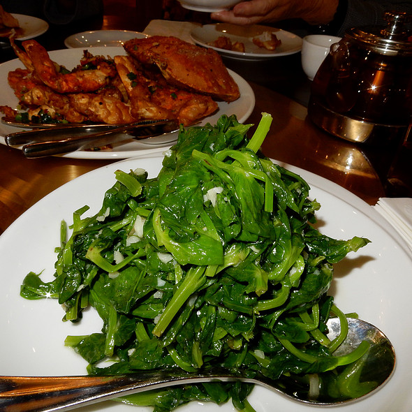 Snow Pea Leaves @ 粵煌 Yue Huang