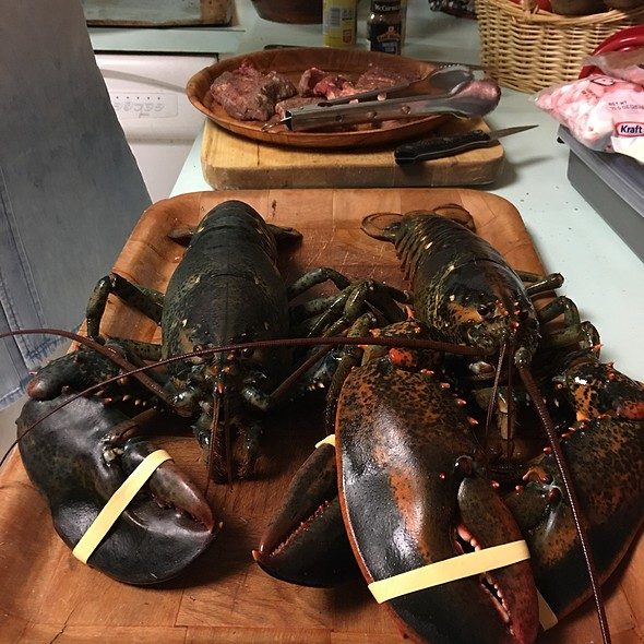 Live Lobsters @ Casa Olive