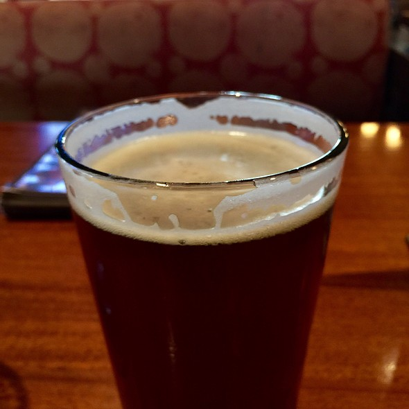 Lazy Dog Red Ale @ The Lazy Dog Cafe