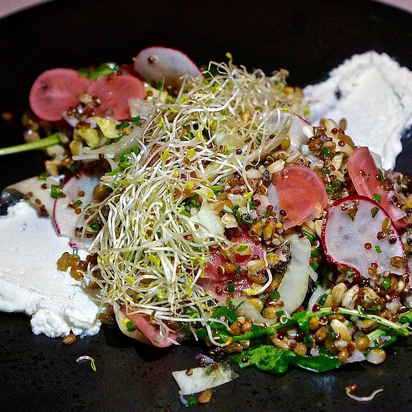 Crispy grain salad, goat cheese, endive, radish, sprouts