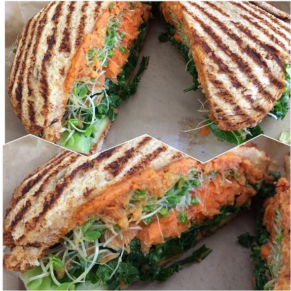 The Yogi  @ Sprout Sandwich Shop