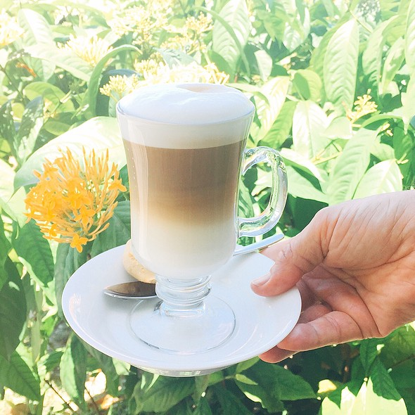 Cafe Latte In The Garden