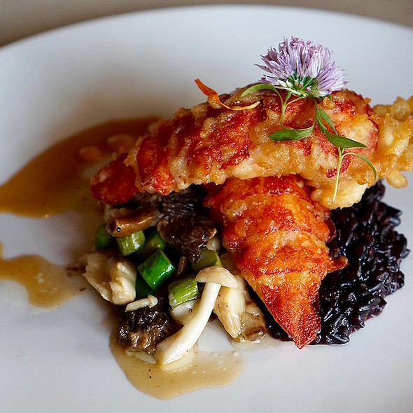 Tempura fried lobster, cracked black rice, asparagus mushroom sauté, wasabi glaze