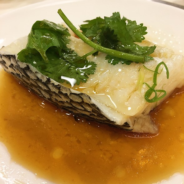 Cod Fish Fillet Steamed in Superior Soy Hong Kong Style 鳕鱼片港蒸