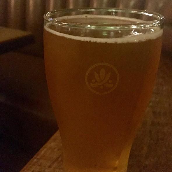 Orange Cream Ale