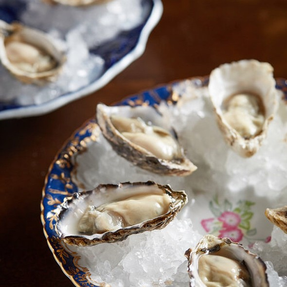 Oysters @ Beacon Tavern