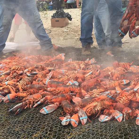 Lobster (Clambake)