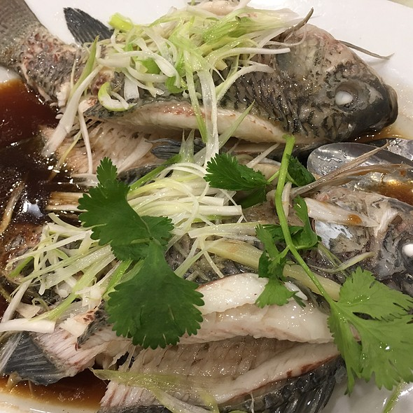 Steamed Fish With Soya Sauce @ Sandy La Chinese Restaurant