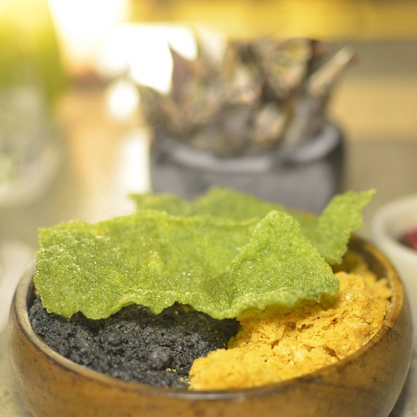 Rock Mollusks @ Central Restaurante