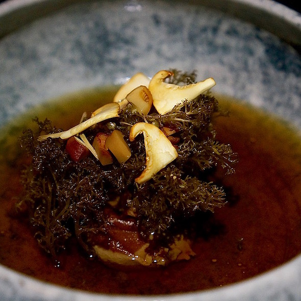 Lichen – reduced and caramelized cream, preserved pine shoots, chanterelle mushroom broth, spruce vinegar