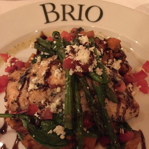 Salmon Fresca @ Brio Tuscan Grille