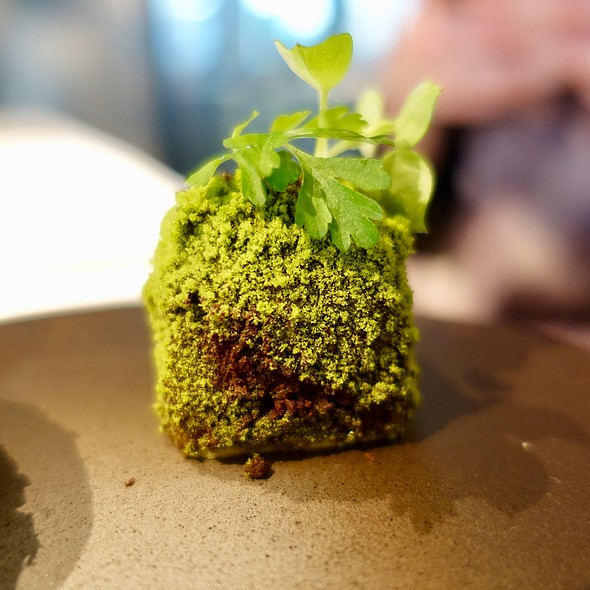 """""""Moss"""" Spinach Powder Crusted Butter"""