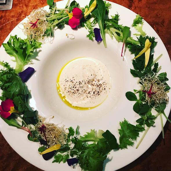 Salad - Wreath