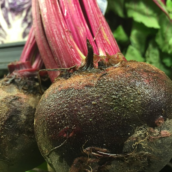 Beets @ Acme