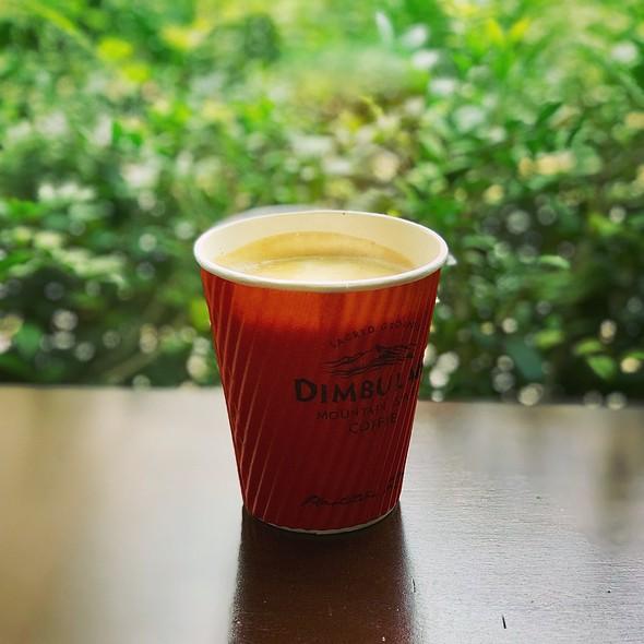 Flat White @ DIMBULAH MOUNTAIN ESTATE COFFEE