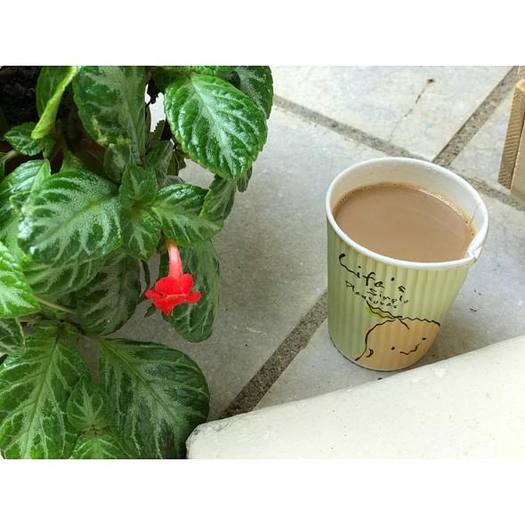 Viet Coffee
