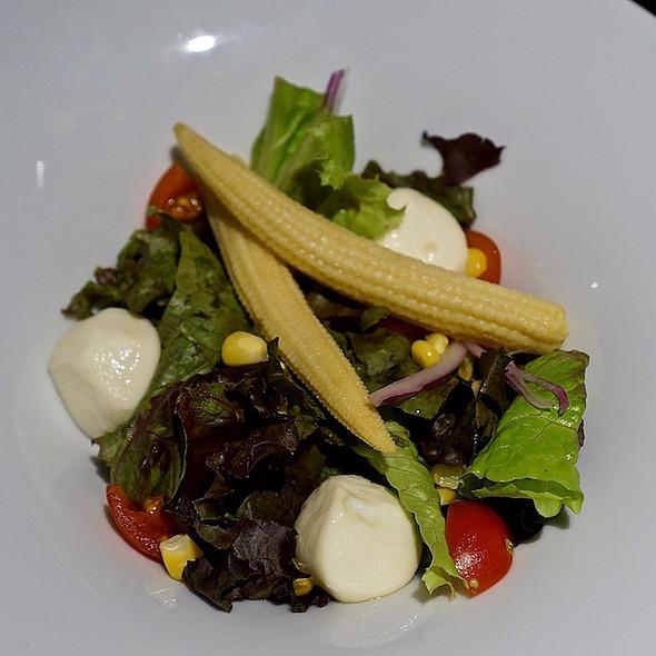 Baby corn and mozzarella salad, tomatoes, greens