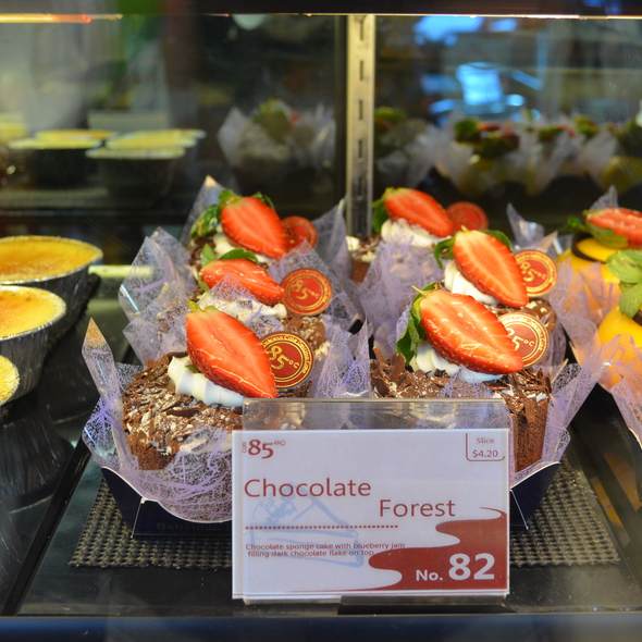 Chocolate Forest @ 85 Degrees
