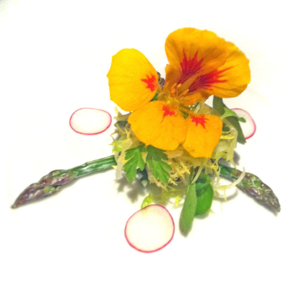 Salade Irma