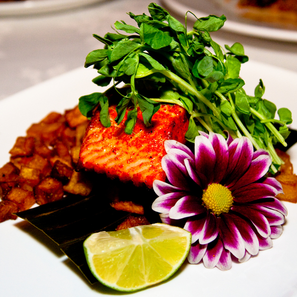 Seared Tandoori Salmon @ Tomi-Kro