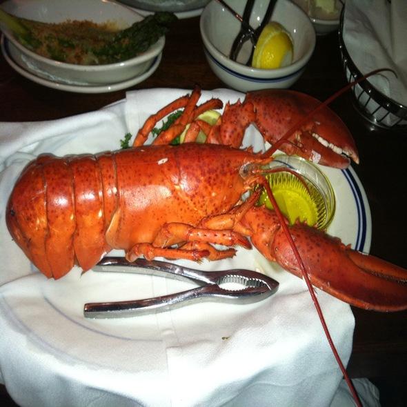 Whole Maine Lobster - The Wharf, Alexandria, VA