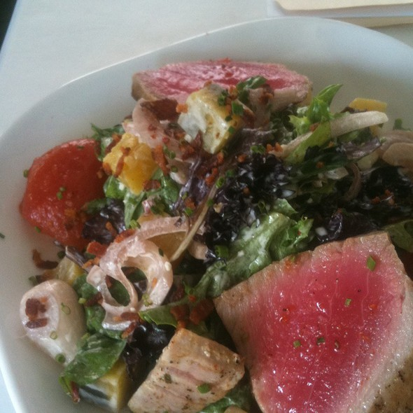 House Salad With Charred Tuna - Harvest Kitchen & Lounge, Solon, OH
