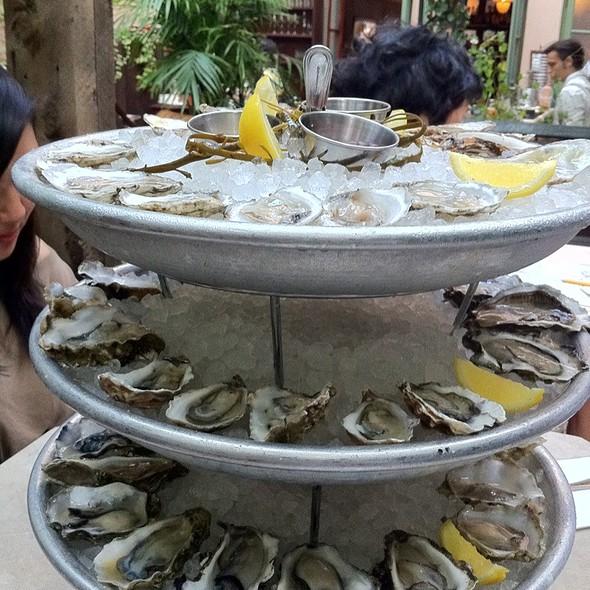 Oysters @ Maison Premiere