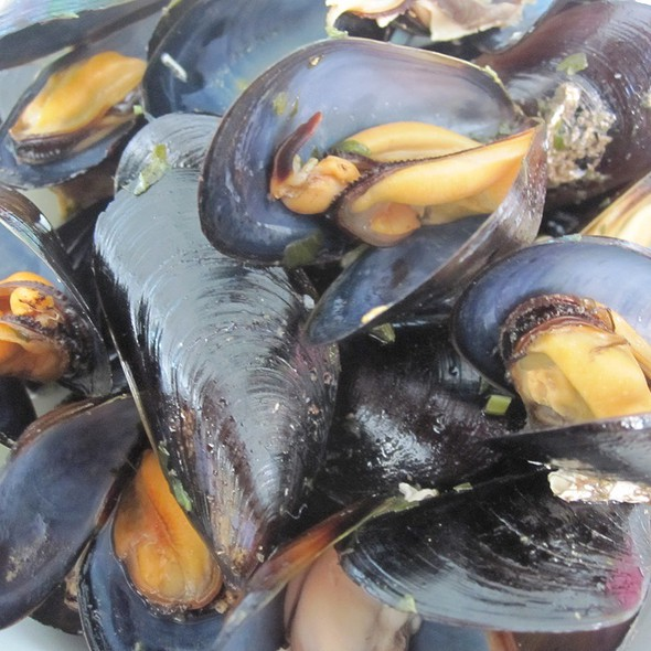 Steamed Mussels @ Montecarlo
