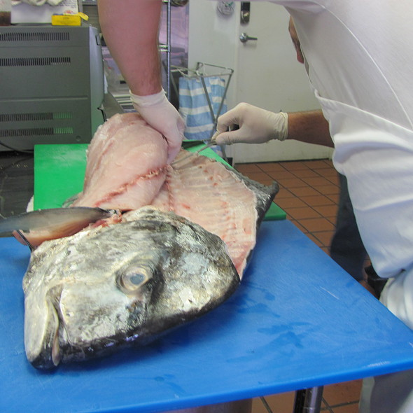 African Pompano @ A La Carte Cafe Carryout & Catering