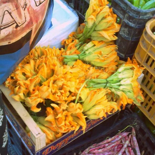Fiori di Zucca @ Mercato del Sabato