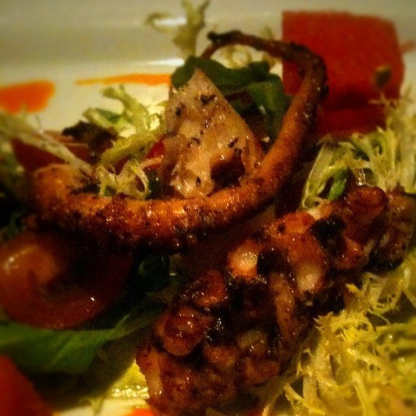Octopus @ The Gage