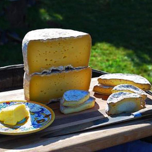 Assorted Raw Milk Cheese @ Sea Breeze Farm