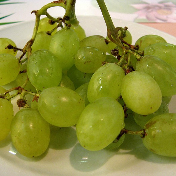 Grapes @ China Restaurant Golden