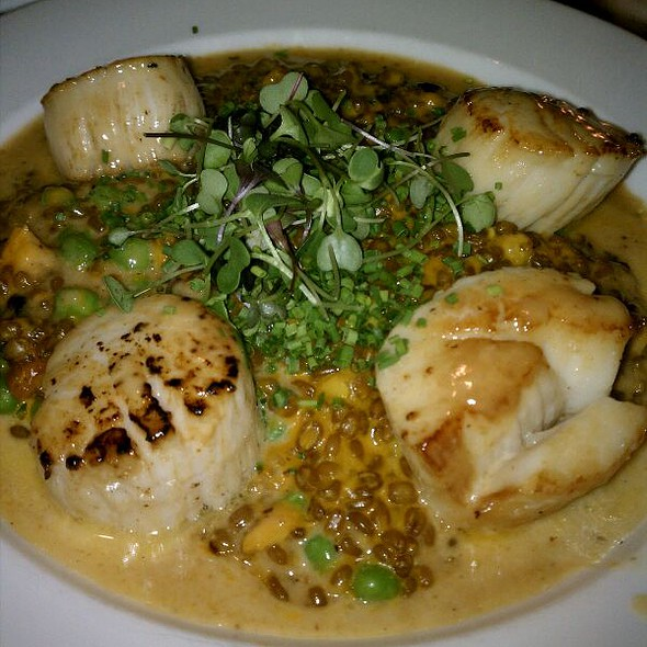 Scallops - ZINC New Haven, New Haven, CT
