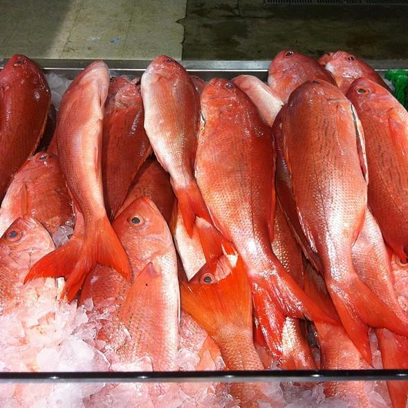 Fresh Red Snapper - Ariccia Trattoria & Bar, Auburn, AL