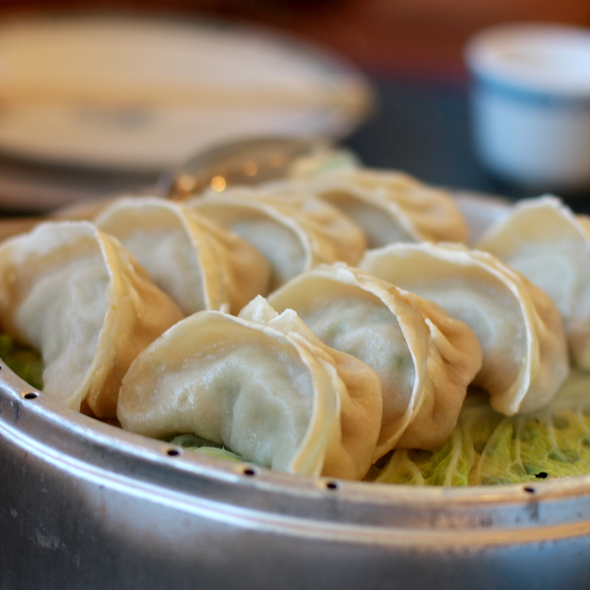 Steamed Potstickers @ San Tung