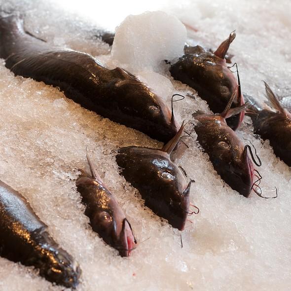 Catfish @ Phil's Fish Market & Eatery