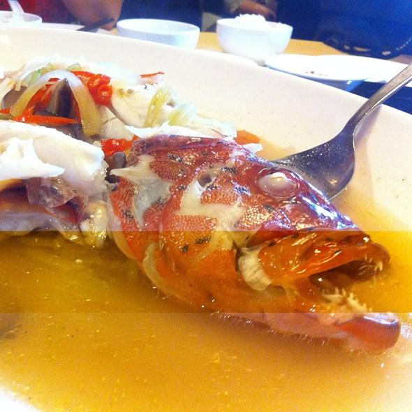Steamed Garoupa @ Jing Long Seafood Restaurant