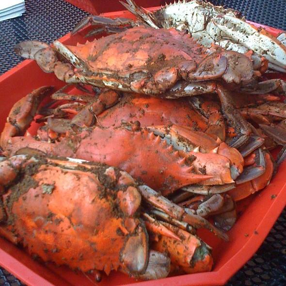 steamed crabs - DiNardo's Famous Seafood, Philadelphia, PA