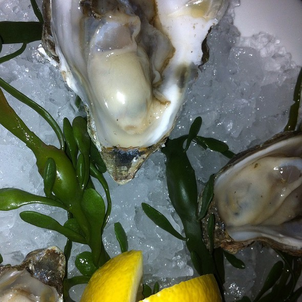 Marin County Oysters - VINeleven at the Napa Valley Marriott, Napa, CA