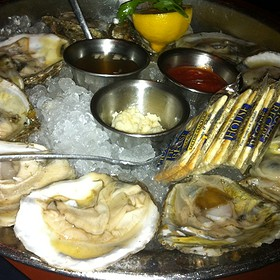 Oysters on the Half Shell - Wildfish Seafood Grille - San Antonio, San Antonio, TX