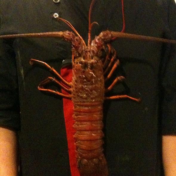 Lobster - Taste Restaurant @ Casa Cupula, Puerto Vallarta, JAL