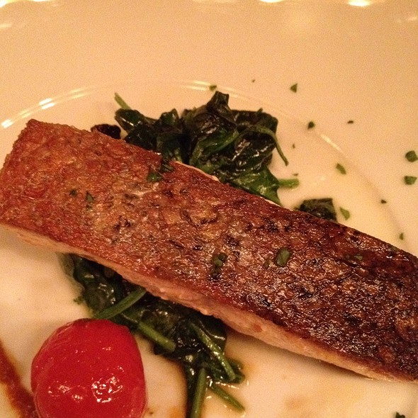 Salmon - Bocca, New York, NY